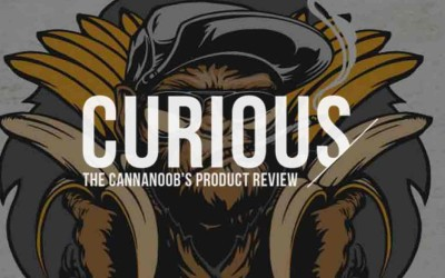 Curious Cannanoob – The Knockout