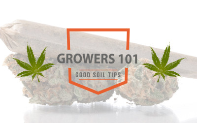 Growers 101 – April 2016