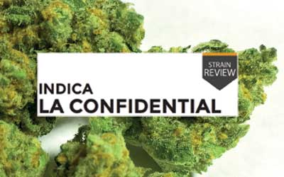 Strain Review LA Confidential