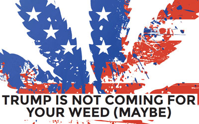Trump Is Not Coming For Your Weed (Maybe)