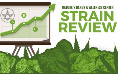 Strain Review – Testing Off The Charts