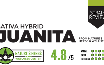 Strain Review – Juanita – CBD