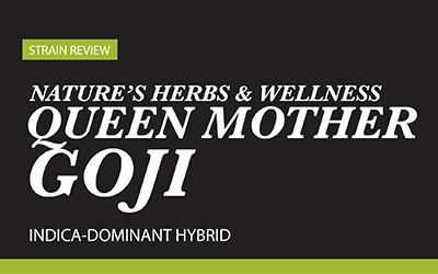Strain Review – Queen Mother Goji