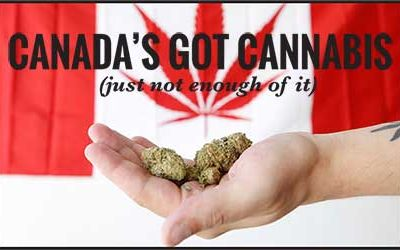 Canada's Got Cannabis (just not enough of it)