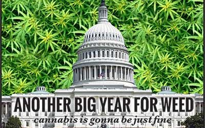 Another Big Year For Weed – cannabis is gonna be just fine