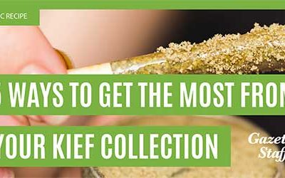 THC Recipe – 5 Ways To Get The Most From Your Kief Collection