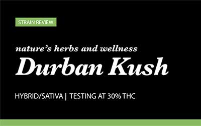 Strain Review – Durban Kush